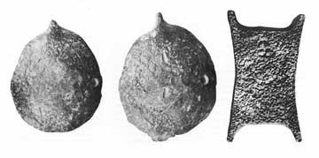 Χελώνες από μόλυβδο (Δελφοί) και χάλκινος πέλεκυς (Κύπρος)