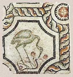 Τμήμα ψηφιδωτού δαπέδου με παράσταση πελαργού που ραμφίζει φίδι, 5ος αι. Βυζαντινό και Χριστιανικό Μουσείο, 01756.