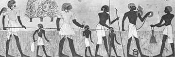 Μέτρηση αγρού στην αρχαία Αίγυπτο.