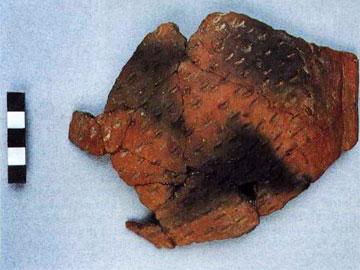 Αγγείο με εμπίεστες νυχιές της αρχαιότερης νεολιθικής φάσης.