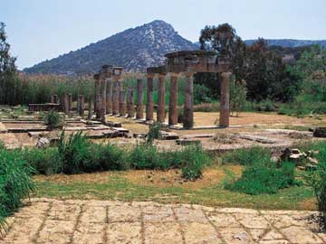 Άποψη του αρχαιολογικού χώρου της Βραυρώνας.