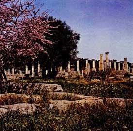 Ολυμπία, το ιερό της Ήρας.