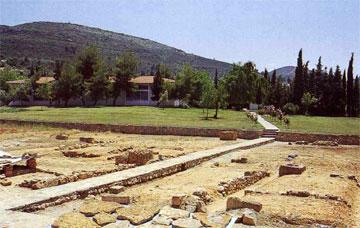 Γενική άποψη του Μουσείου Νεμέας από το Ιερό του Διός.