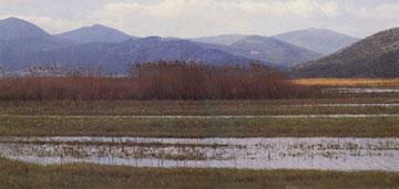 Λίμνη Δύστου. Πανοραμική άποψη.