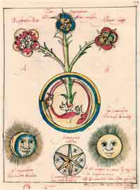 Ο θείος Δράκων (H. Reussner, Pandora, 1582)
