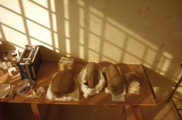 Λίθινα αντικείμενα που έχουν τοποθετηθεί με τη σειρά εισαγωγής τους στο αυτοσχέδιο εργαστήριο.