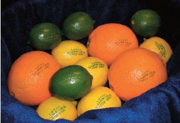 Επιδερμική σήμανση με λέιζερ σε φρούτα.