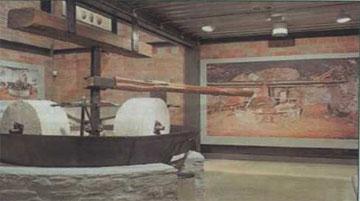 Μουσείο Ελιάς και Ελληνικού Λαδιού, Σπάρτη.