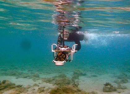 Underwater mapping … PhD student Ariell Friedman puts the Diver Rig underwater imaging technology developed in Sydney to use at Pavlopetri.