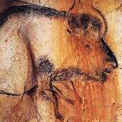 Stone Age art gets animated
