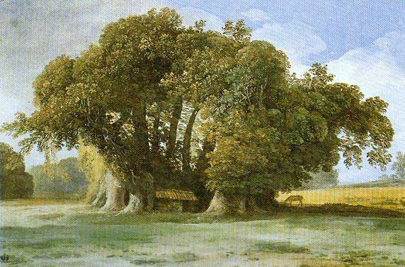 The chestnut tree in a painting by Jean-Pierre Houël (c.1777).