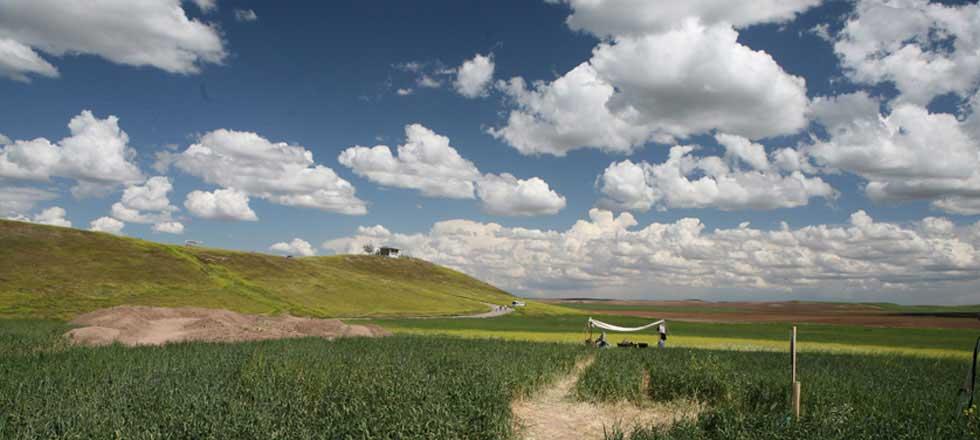 Ziyaret Tepe. Image: Ziyaret Tepe Archaeological Expedition.