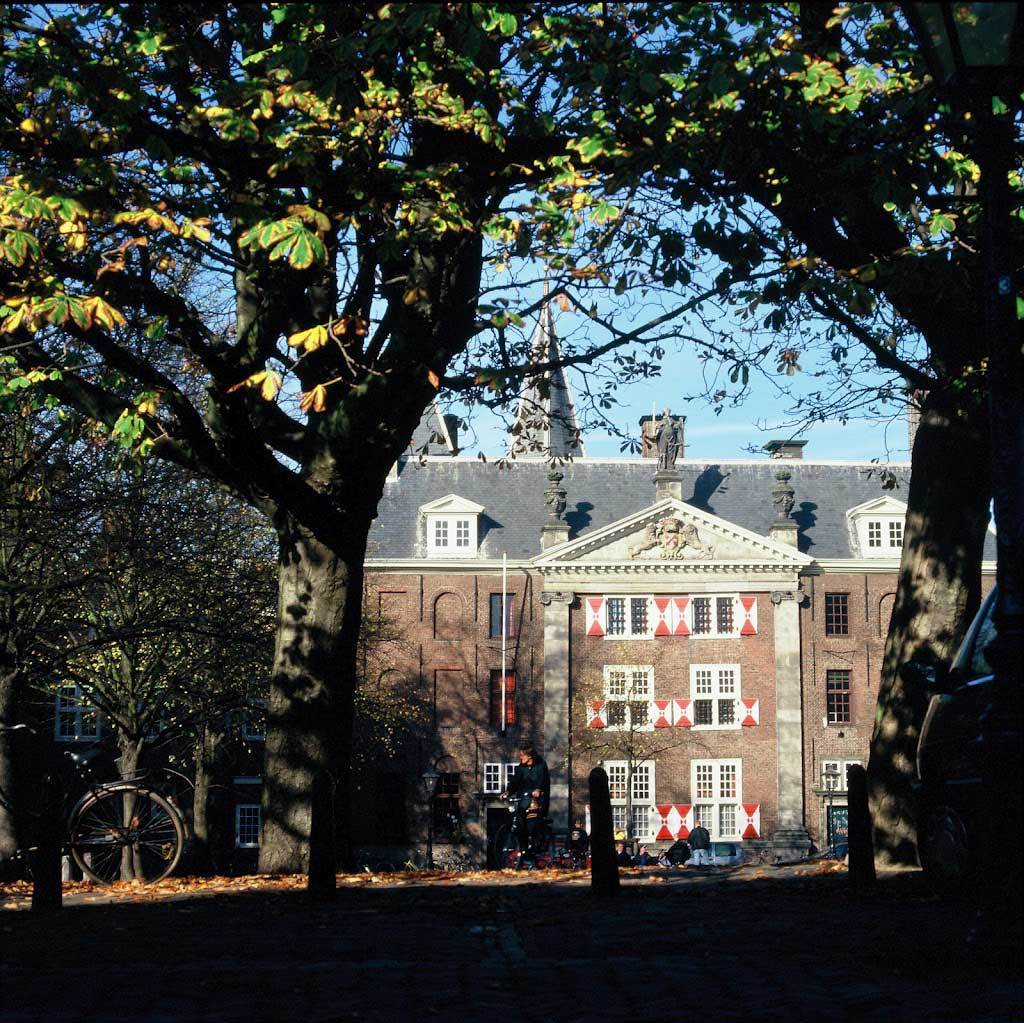Nine positions at Dutch universities