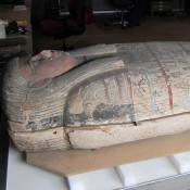 Live Mummy Conservation