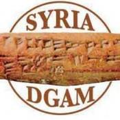 Emergency meeting on saving Syria's heritage