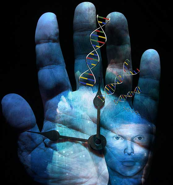 The anthropological data can help geneticists when they investigate genetic changes that emerge over time.