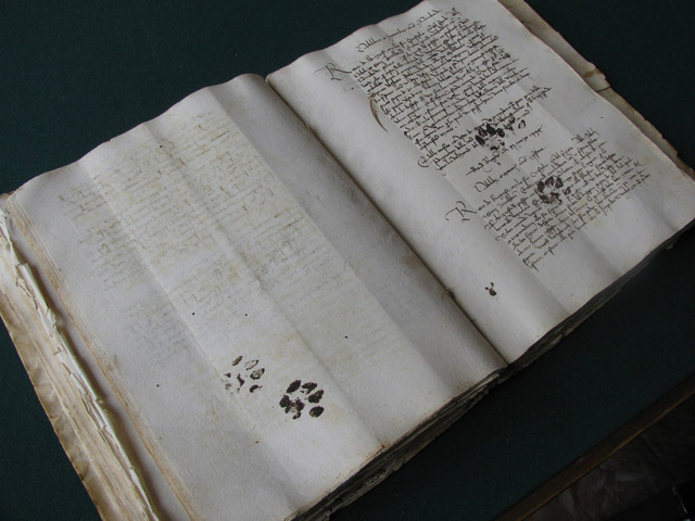 Two steps to eternity: cat paws printed forever on a 14th century manuscript from Croatia.