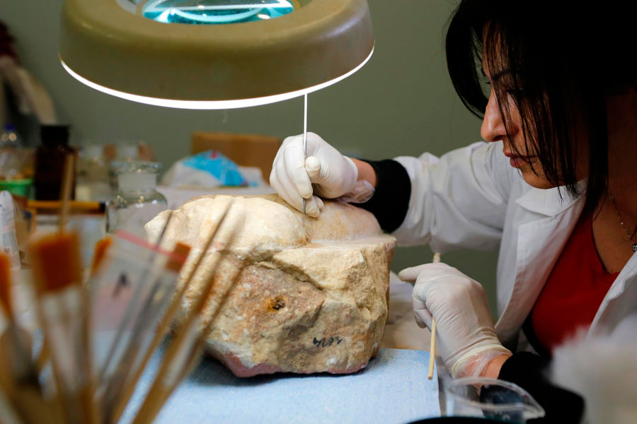 A conservator at work. Photo uploaded on Facebook by the Archaeological Museum of Tegea group.