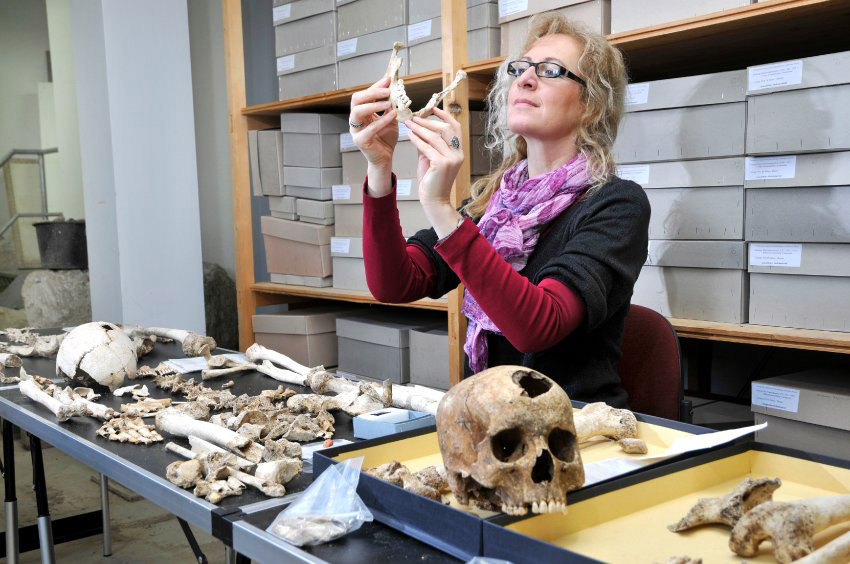 Marita Genesis studies bones at the Thuringia State Office for the Preservation of Monuments.