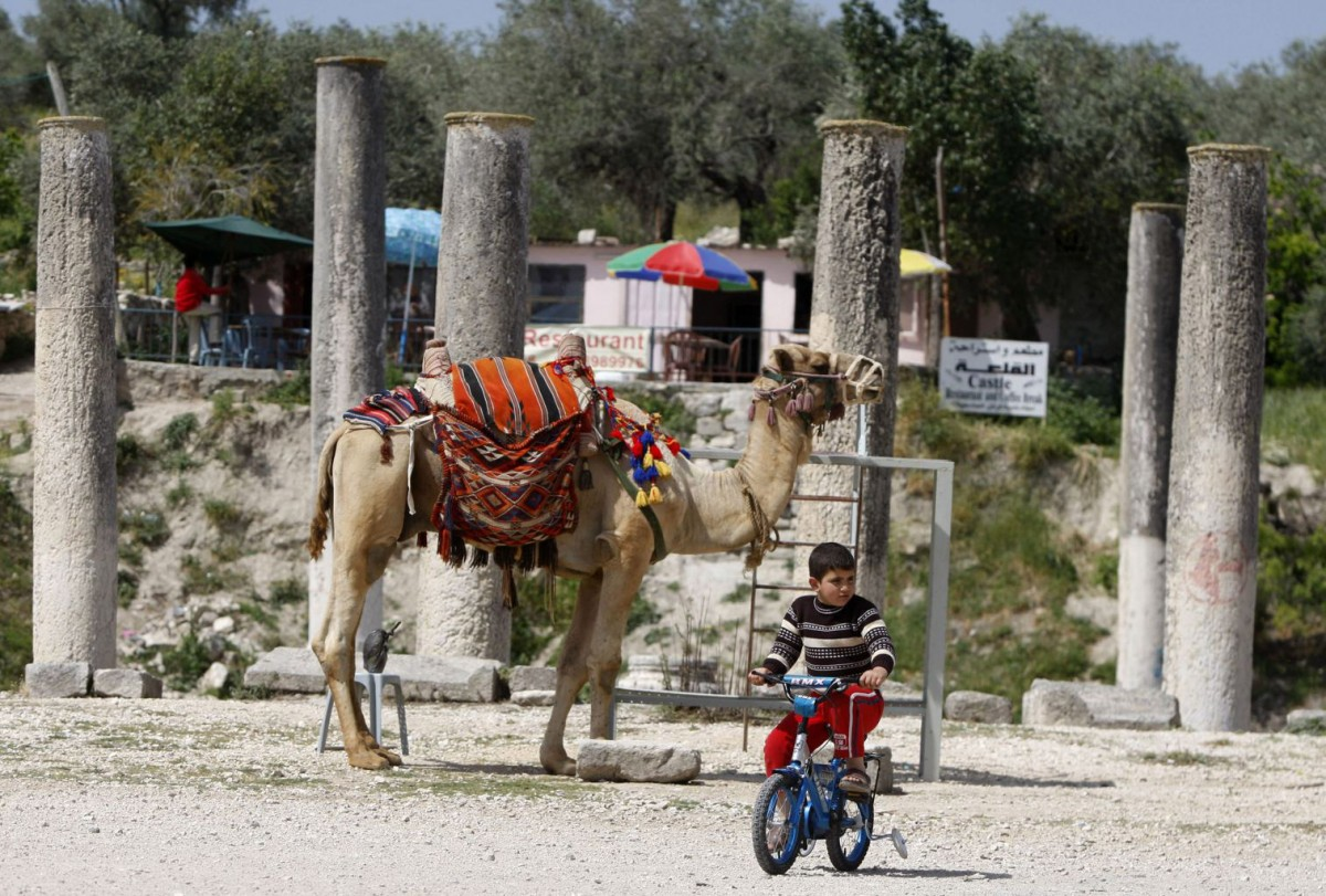 A child riding a bike in front of a camel and around Sebastia's Roman ruins.