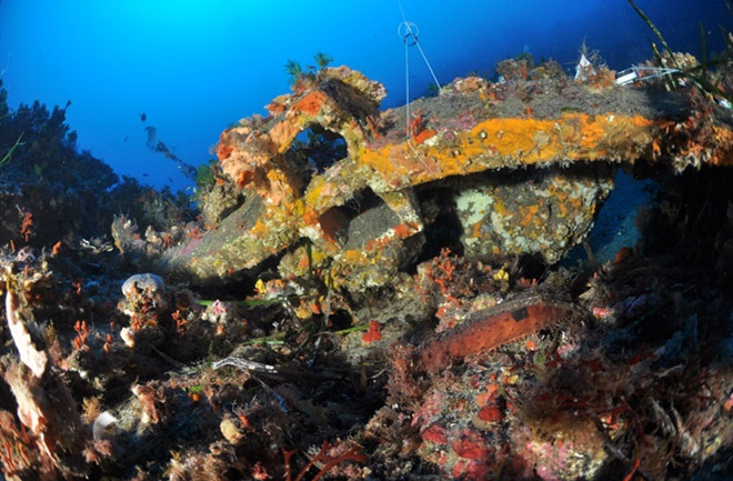 One of the anchors left by the Carthaginian ships and found off Pantelleria.Source: Pantelleria Ricerche/Discovery News.