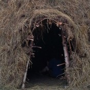 Replica of 10,000 Year Old Mesolithic Dwelling Built