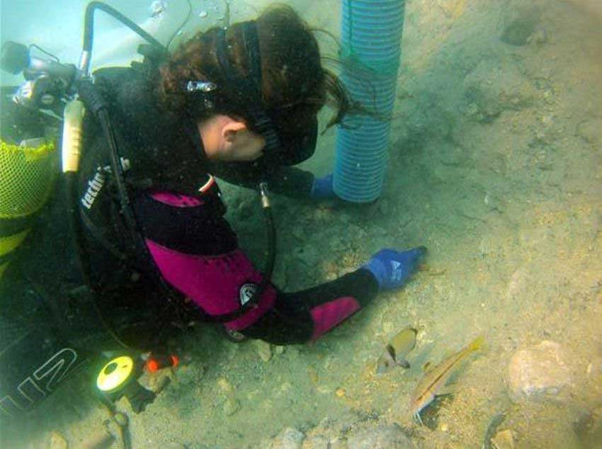 Twenty underwater archaeologists are taking part in the excavations in Limantepe [Credit: AA].