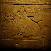 The Living World of Animals in Antiquity