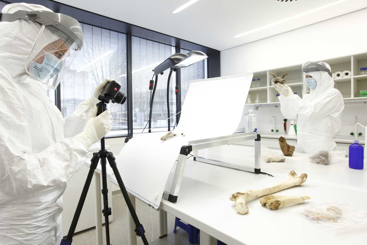 Palaeogenetic research in the ultra-clean laboratory at Mainz University. Photo: Thomas Hartmann.