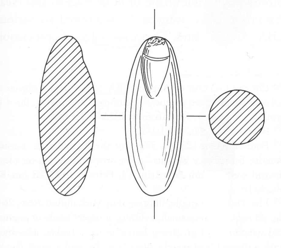 Fig. 39. Balance weight made of haematites, found in a Middle Bronze Age environment (Trench 3).