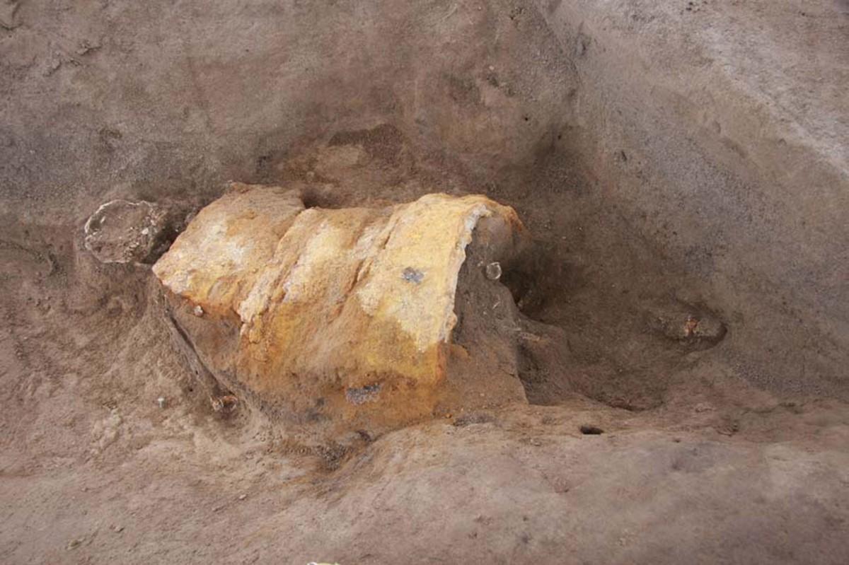 Image from the excavation at Kanai-Higashiura, Shibukawa, Japan. Image: Japan Times.
