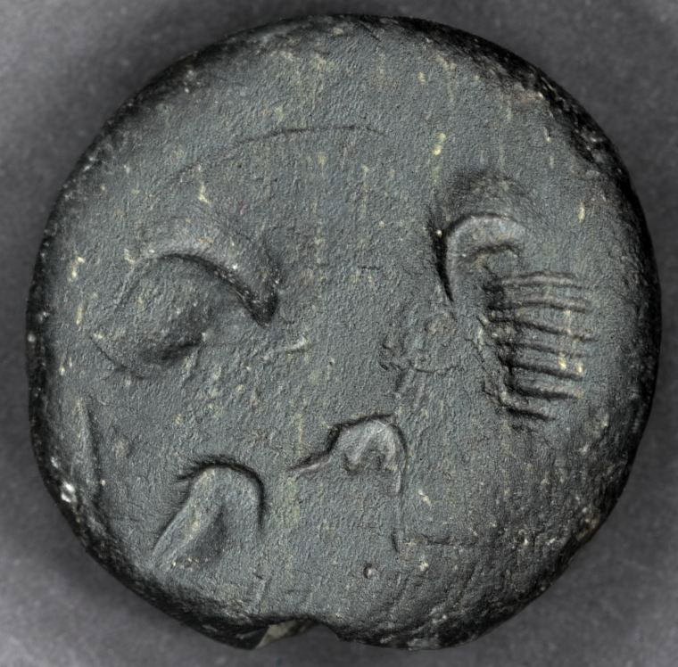 Fig. 23. Seal that depicts a scorpion found in Room 28.
