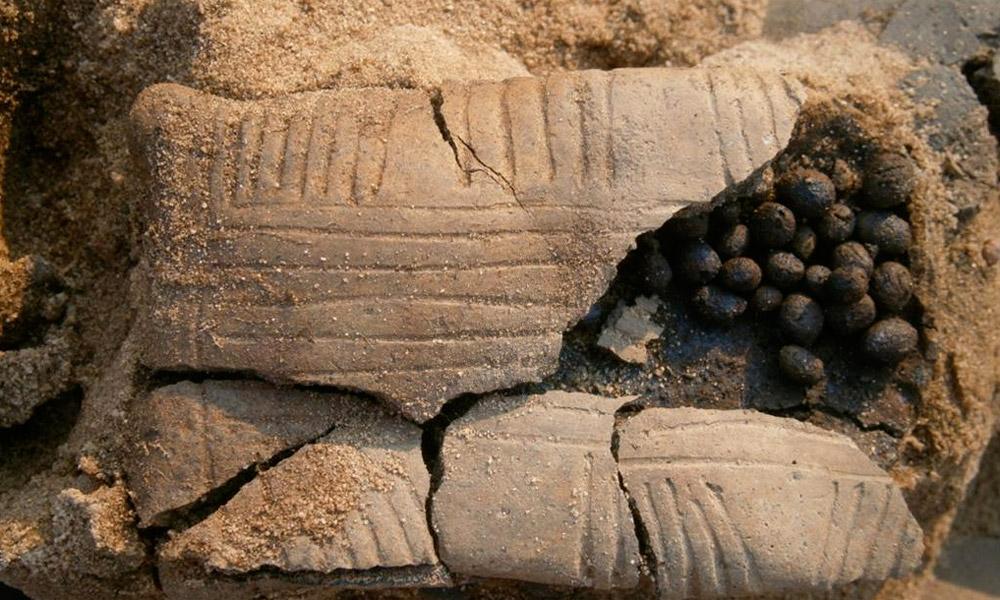 Clay rattle in a child grave. Lusatian culture, Legowo, Poland. Photo by M. Krzepkowski.