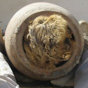 Ancient Dogs Found Buried in Pots in Egypt