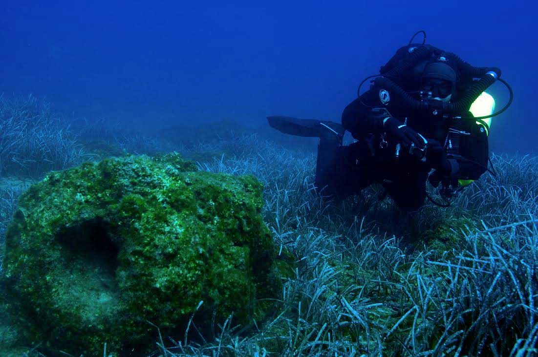 Six ancient shipwrecks and five anchorages were located.