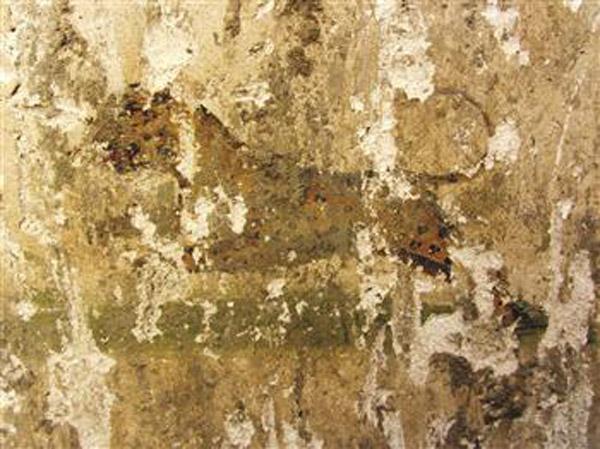 Fresco depicting a leopard, found at Denizli, Turkey. Photo: Hurriyet.
