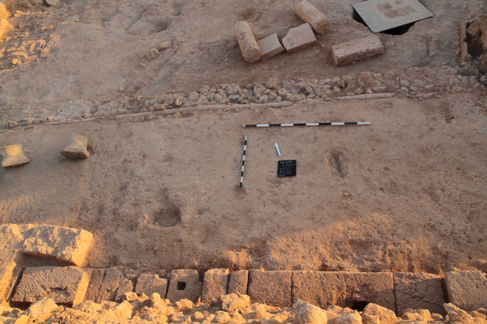 Fig. 1. Excavation was confined to the remaining southern part of the main courtyard of the so-called Hellenistic House and its southern portico. (Photo: Department of Antiquities of Cyprus)