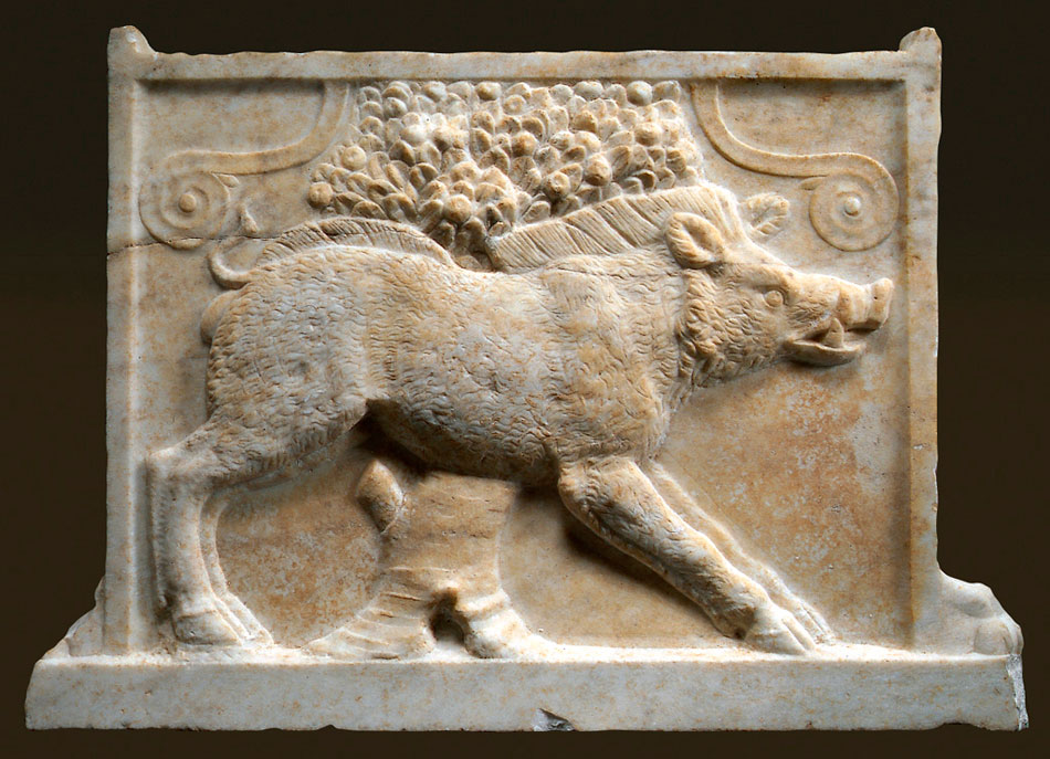 Fig. 1. The marble table support with depiction of a boar at the  Archaeological Museum of Kissamos. Photograph by El. Eliades.