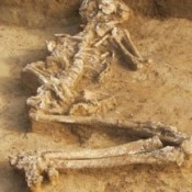 Pregnant for 6000 Years?