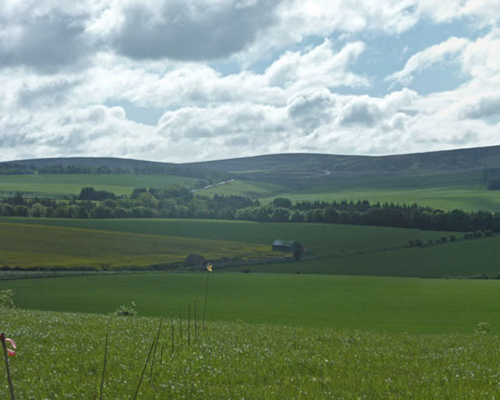 View to Lammermuir HIlls in East Lothian from the Sheriffside hillfort. Image: David Connolly/Past Horizons.