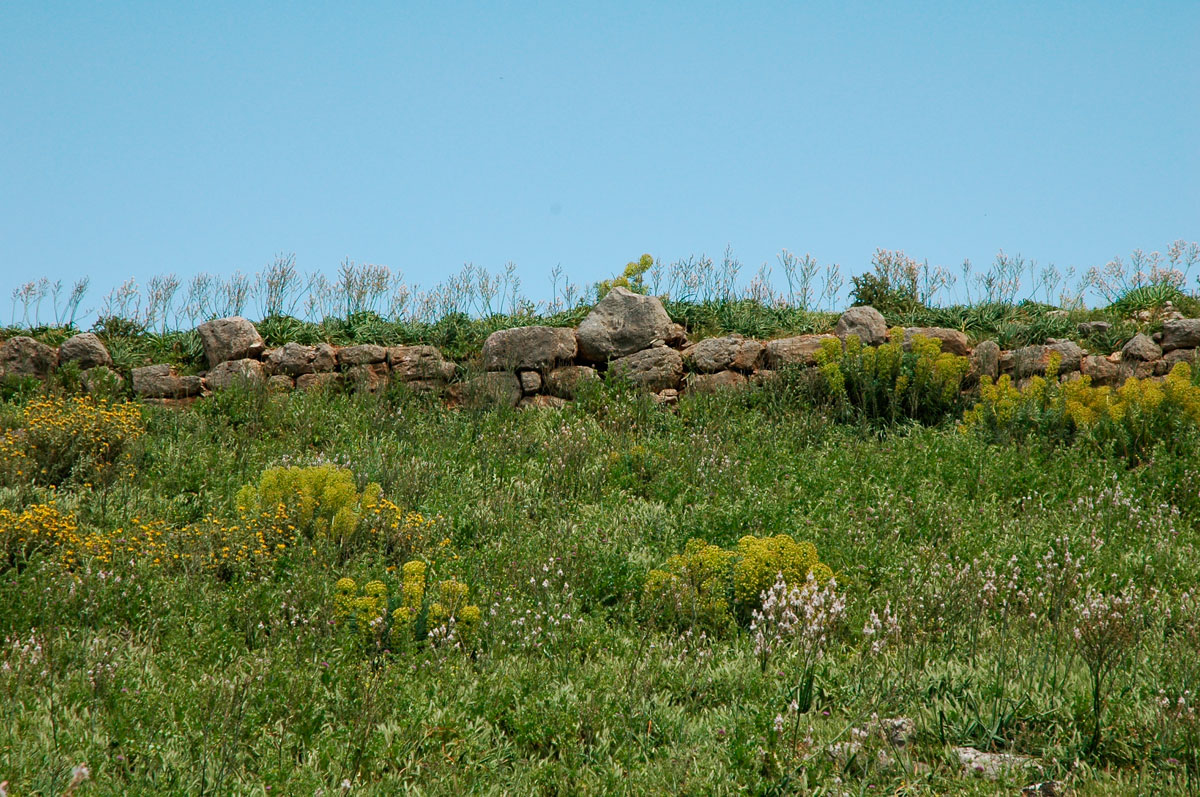 Fig. 3. Surviving fortifications on the hill of the ancient city (personal archive).