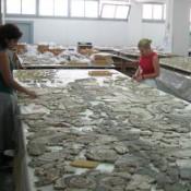 Thera Fresco Conservation Lab Closed