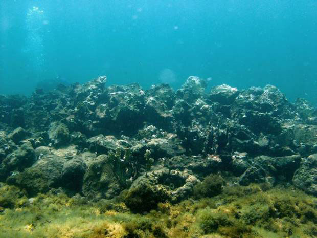 Santa Maria: The underwater remains of what is thought to be Columbus's flagship.
