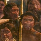 The Sima de los Huesos hominin