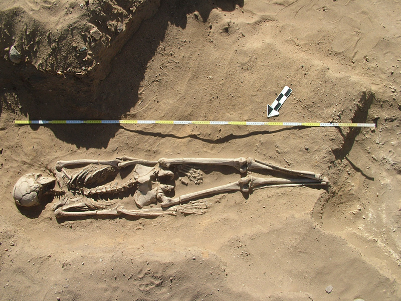 Al Khiday prehistoric site. One of the prone extended burials.