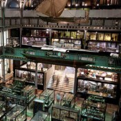 Oxford University Museums to receive nearly £4.5 million over three years