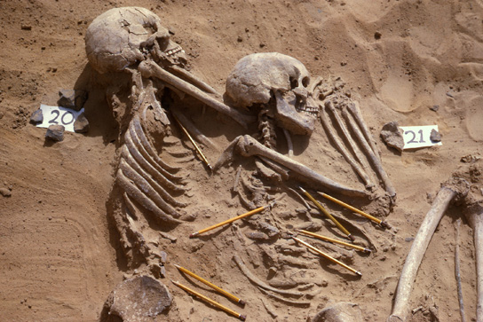 The Skeletons of Jebel Sahaba: Excavation photo of the two victims of violence featured in Room 64 (burials 20 and 21). The pencils point to weapon fragments mixed with the bones. (photo: Wendorf Archive, British Museum)