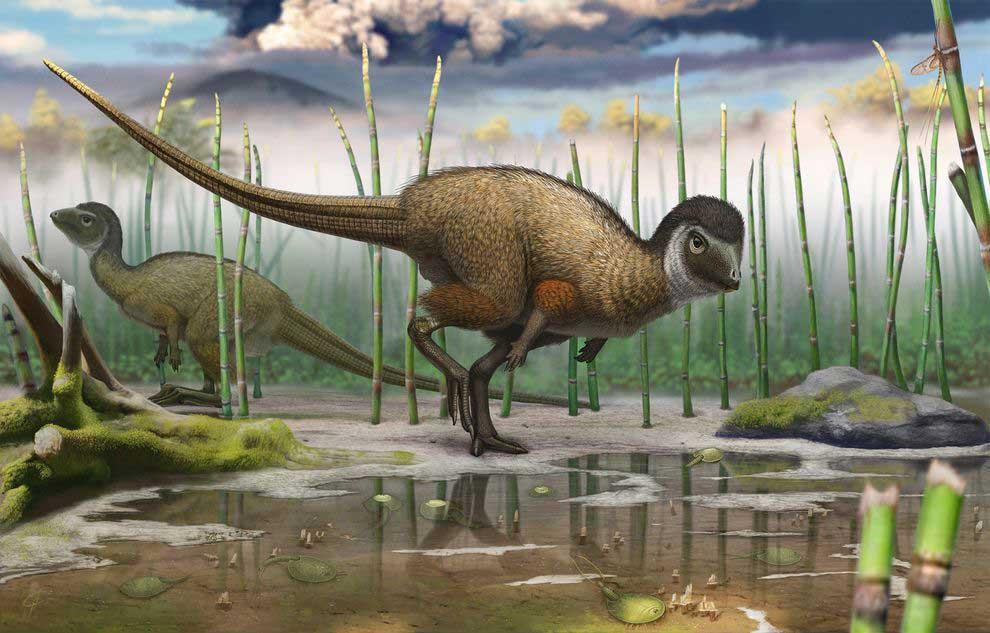 Illustration of Kulindadromeus zabaikalicus in its natural environment. Illustration by Andrey Atuchin.