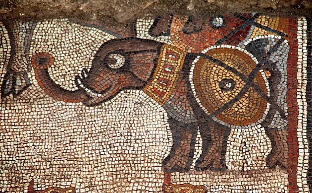Detail of mosaic at Huqoq, Israel: Elephant with shield tied to its side. (photo by Jim Haberman)