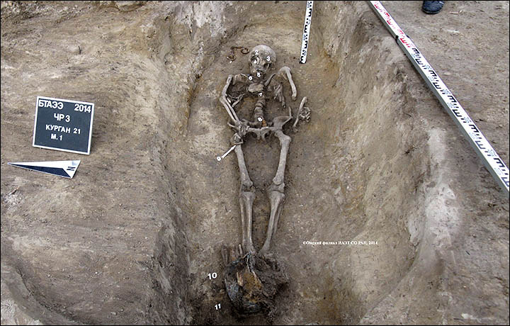 Bogatyr in his tomb surrounded by his grave goods. Photo: Siberian Times.
